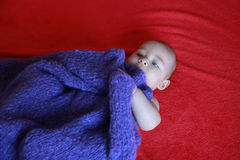 Cute blonde little baby boy with blue eyes hiding under purple blanket Stock Image