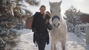 Pretty young woman walks with a beautiful white horse leading her holding a stirrup over a snow-covered country ranch. Cute blonde walks with a beautiful white stock video footage