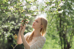 Cute Blonde Woman Among Apple Tree Branches. Spring Concept Stock Photo