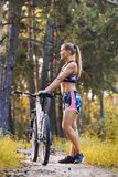 Cyclist cycling mountain bike on pine forest trail Royalty Free Stock Photos
