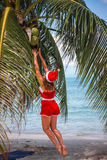 Cute blonde woman in red dress and santa hat jump to palm trees coconut on exotic tropical beach. Holiday concept for Royalty Free Stock Photos