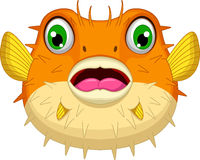Cute Blowfish or diodon holocanthus cartoon Royalty Free Stock Photography