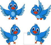 Cute blue bird cartoon collection Royalty Free Stock Photos