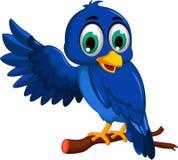 Cute blue bird cartoon presenting Stock Image