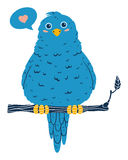 Cute blue bird. Blue bird sitting on a branch and singing about love Stock Image
