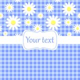 Cute blue card invitation with chamomile.  Royalty Free Stock Image