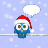 Cute blue christmas bird Stock Photos