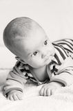 Cute blue-eyed baby boy Royalty Free Stock Photo
