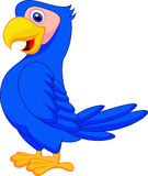 Cute blue parrot cartoon Stock Photos