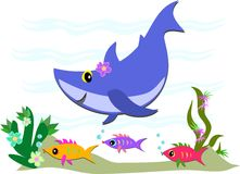 Cute Blue Shark and Fish Friends Stock Images