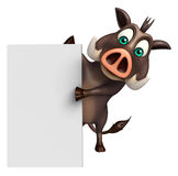 Cute Boar cartoon character with white board Stock Images