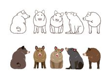 Cute boars border set. Brown line arts and with colors vector illustration