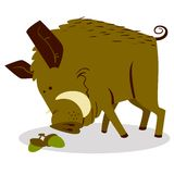 Cute boars or warthog character with acorn. Vector illustration. With wild pig. Forest inhabitant in cartoon flat style. Chinese horoscope personage royalty free illustration
