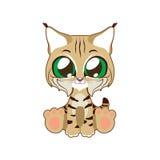 Cute bobcat  illustration art. In flat color Stock Image