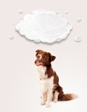 Cute border collie with empty cloud Royalty Free Stock Photo