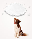 Cute border collie with empty cloud Stock Photography
