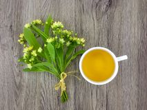 Cute bouquet of linden flowers and tea cup on wooden table. Flat lay, top view royalty free stock image