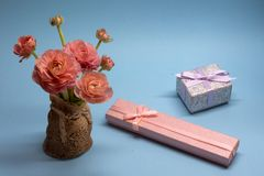 Cute bouquet of tender pink buttercups and a gift on a blue background stock photo