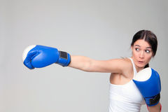 Cute boxer Stock Photography