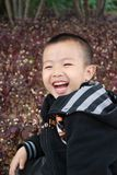 Cute Boy. Young boy playing cheerfully in the park Stock Photo