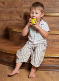 A cute boy with an apple. A cute boy with an apple in his hand sitting on the steps Stock Images