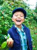 Cute boy in apple orchard Stock Photos