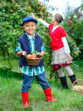 Cute boy in apple orchard Royalty Free Stock Images