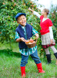Cute boy in apple orchard Stock Images