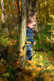 Cute boy and autumn forest Stock Photography