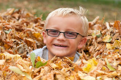 Cute Boy in Autumn Leaves Royalty Free Stock Images