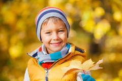 Cute boy with autumn leaves Royalty Free Stock Photos