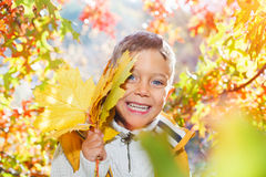Cute boy with autumn leaves Royalty Free Stock Photo