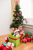 Cute boy and baby brother at christmas Stock Image