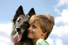 A cute boy with a Belgian shepherd royalty free stock images