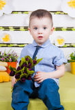 Cute boy in a blue denim shirt and tie, jeans and boots. Sitting on a bright spring and summer decorations and smiling Royalty Free Stock Photo