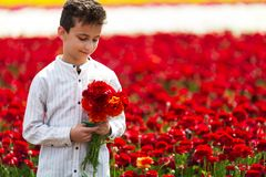 Cute boy with a bouquet of buttercups in the springtime stock photography