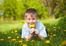 Cute boy with dandelions in a green park. summer Royalty Free Stock Photos