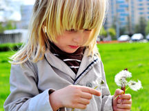 Cute boy with dandelions Stock Photo
