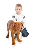 A cute boy with the dog Royalty Free Stock Photo
