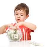 Cute boy with dollars Royalty Free Stock Image