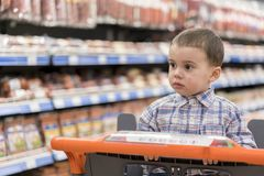 A cute boy dressed in a plaid shirt in a supermarket in a trolley. Against the background of shelves with meat products and sausag. Es Royalty Free Stock Photo