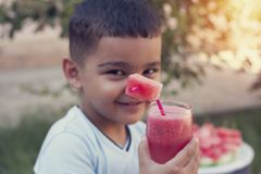 Child boy drinking watermelon smoothie from glass with straw royalty free stock images