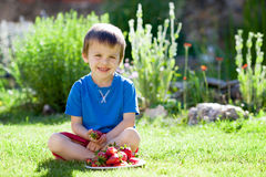 Cute boy eating strawberries. In the morning Royalty Free Stock Photo