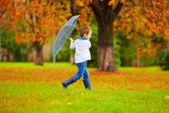 Cute boy enjoying an autumn rain in city park Stock Image