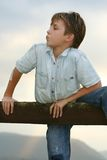 Cute boy on fence Stock Image