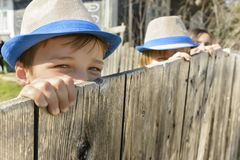 Cute Boy on Fence Stock Images