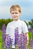 Cute boy in field. Stock Photography