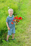 Cute boy in field with red poppies bouquet Royalty Free Stock Image