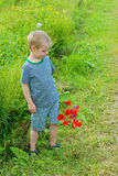 Cute boy in field with red poppies bouquet Royalty Free Stock Photos