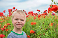 Cute boy in field with red poppies Stock Photo